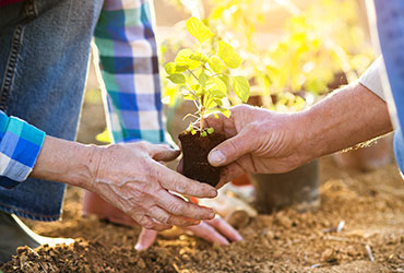 Presbyterian Homes Non-Profit Organizations