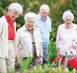 Group of seniors looking at flowers